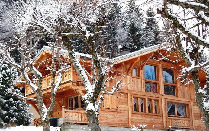 Luxury Ski Chalet in the snow